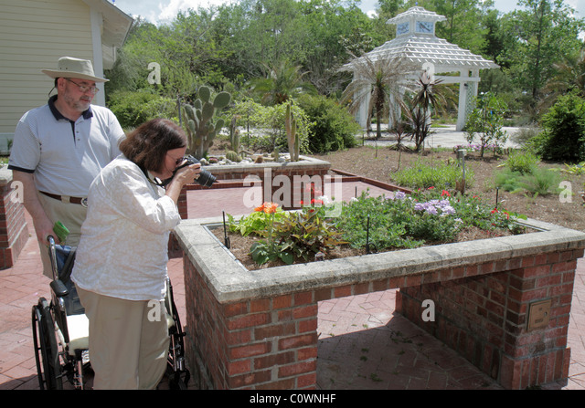 Orlando Florida Harry P. Leu Gardens flowers flowerbed woman wheelchair disabled man couple standing taking picture - Stock Image