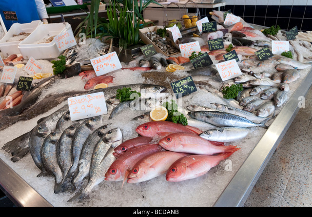 Fresh fish display at local fishmonger London England UK - Stock Image