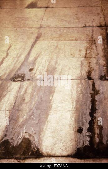 Weeping Floor - Stock Image