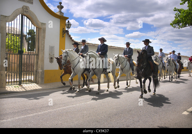 A parade of horses passes the cemetery in Golega, Portugal. - Stock Image