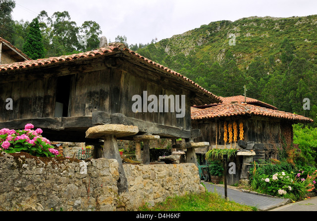 Horreo granaries on pillars topped with flat stones mueles to repel rodents, with maize cobs drying, Cuevas, Asturias, - Stock Image