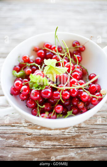 Red currant in white bowl - Stock Image