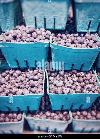 Seasonal fresh local blueberries stacked up in containers, for sale in a produce market. Vancouver, British Columbia, - Stock Image