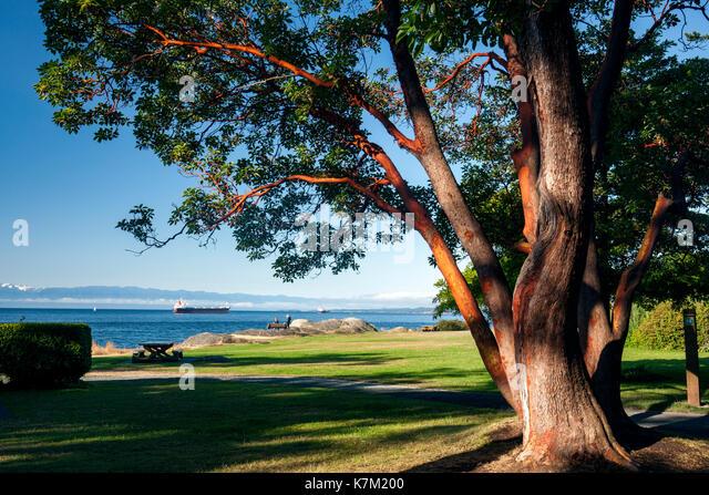 Saxe Point Park - Esquimalt, Victoria, Vancouver Island, British Columbia, Canada - Stock Image
