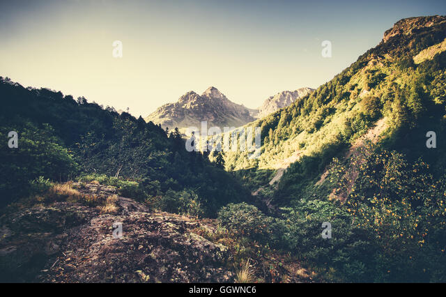 Landscape Mountains and forest in Abkhazia Summer Travel serene scenic morning view - Stock Image