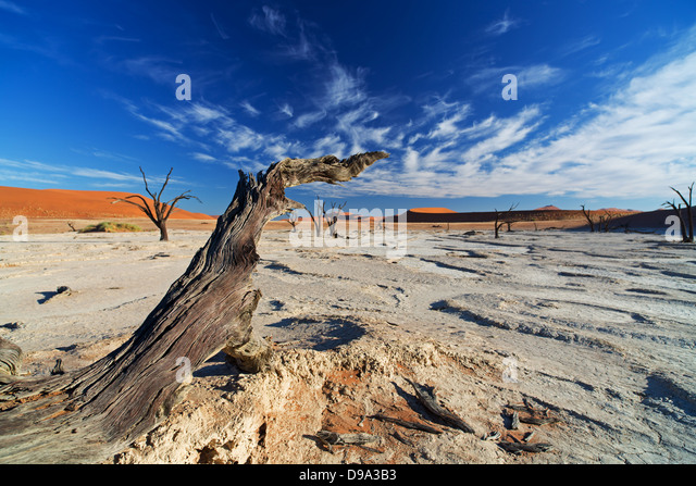 Sossusvlei, Sossusvlei, Sesriem, Namib, Namibia, desert, Wüste, Wueste - Stock Image