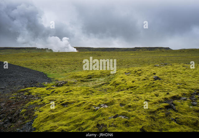 Iceland - Green moss covered lava field with geothermal energy - Stock Image