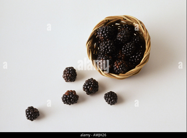 Blackberries spilling out of basket - Stock Image