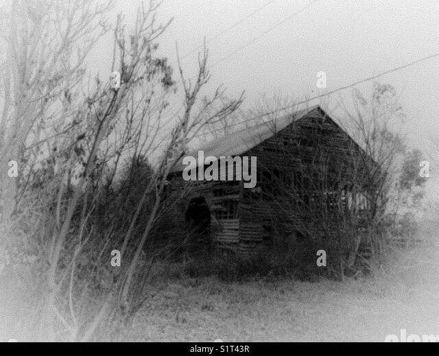 Nostalgic old barn in misty  black and white filter - Stock Image