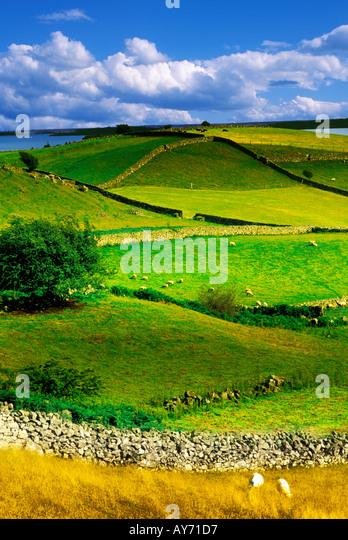 LOUGH CORRIB GALWAY COUNTY IRELAND - Stock-Bilder
