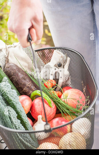 Harvest from a garden, mixed fruits and vegetables - Stock Image