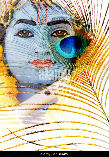 Lord Krishna and peacock feather concept on white background - Stock Image
