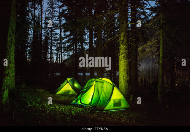 Tents glow in the gathering dark after an afternoon of llama trekking, and hiking in the Swan Mountain Range in - Stock Image