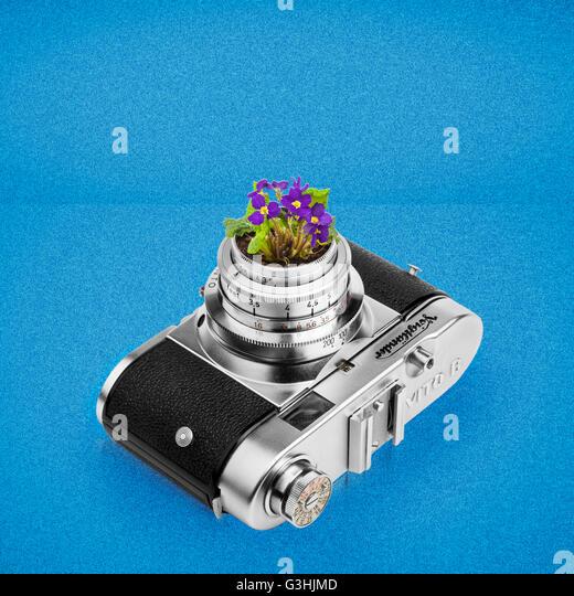 flowerpot camera - Stock Image
