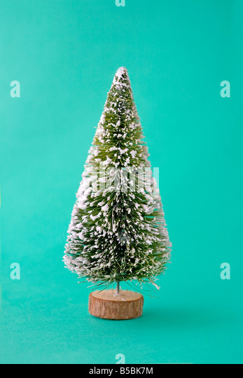 Christmas tree - Stock Image