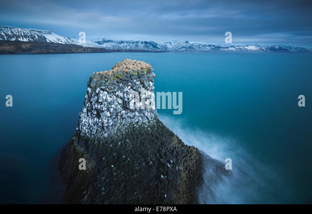 a sea stack streaked with the guano of fulmars and kittiwakes, nr Arnastapi, Snaefellsnes Peninsula, western Iceland - Stock Image