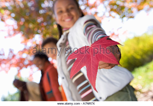 Family walking in autumn park focus on girl 7 9 holding red maple leaf smiling low angle view portrait tilt - Stock Image