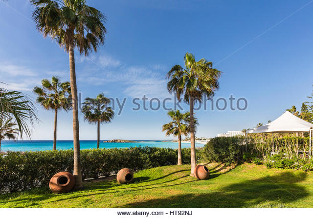 Palm trees and planters on lawn in garden at Nissi Beach Resort in Agia Napa, Cyprus - Stock-Bilder