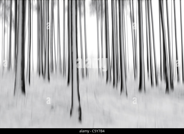 blurred trees and snow. - Stock Image