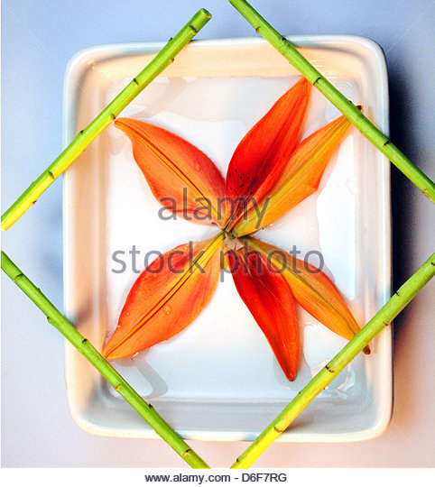 Japanese floral place setting - Stock Image