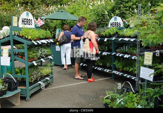 Rhoshill Herbs and Garden plants at Cardigan Riverside Food Festival Ceredigion Wales Cymru UK GB - Stock Image
