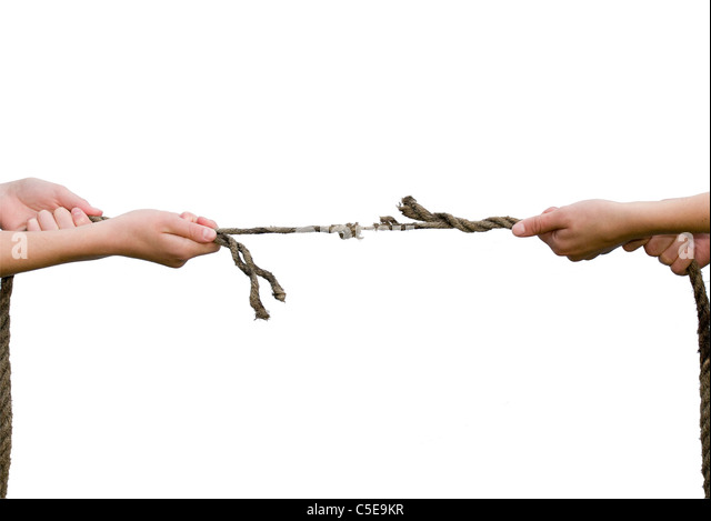Close-up of hands playing the tug of war against white background - Stock Image