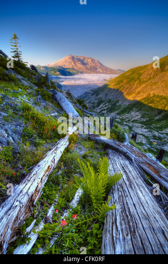 Mount Saint Helens and Spirit Lake from Norway Pass Trail; Mount Saint Helens National Volcanic Monument, Washington. - Stock Image