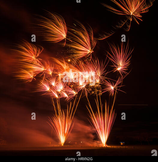 Fireworks explode in the night sky - Stock Image