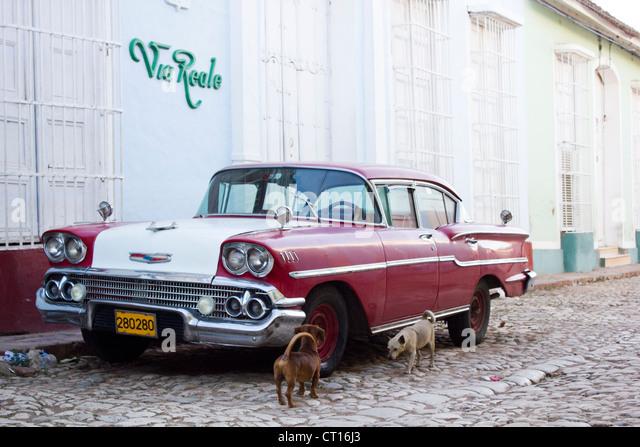 Dogs examining vintage car on street - Stock Image