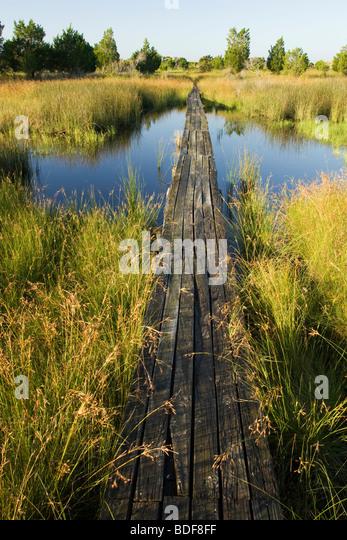 Wooden footbridge to Jekyll Point - Jekyll Island, Georgia USA - Stock Image