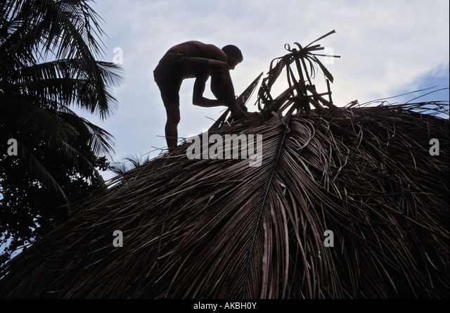 Man thatching roof on a bohio in Barigua near Baracoa Cuba - Stock Image
