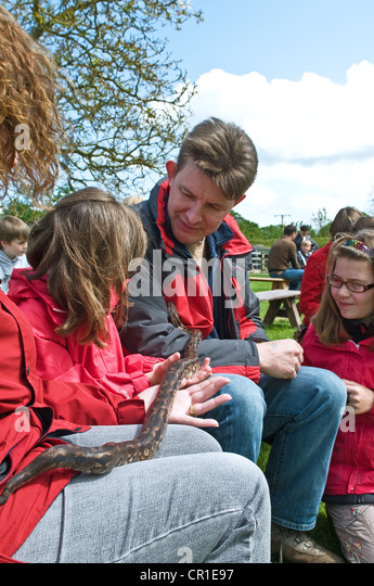 A family handling a snake at Woodside Wildlife and Falconry Park, UK - Stock Image