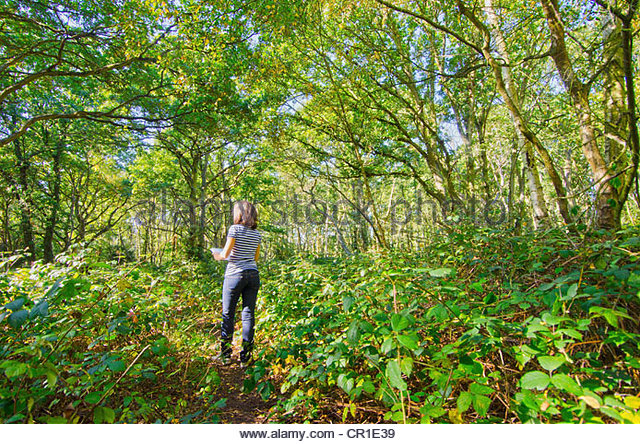 Older woman reading map in forest - Stock Image