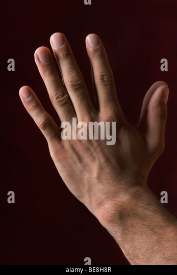 Hands clasped in prayer - Stock Image
