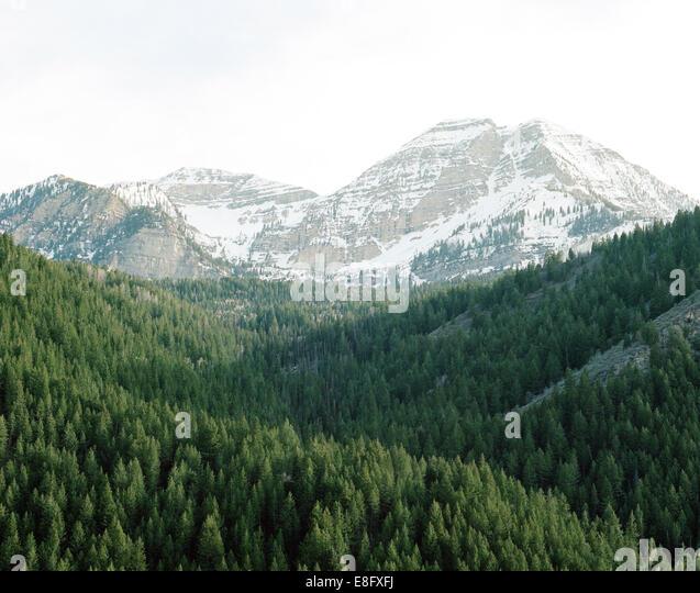 USA, Utah, American Fork Canyon, Spring evening looking towards Mt. Timpanogos - Stock Image