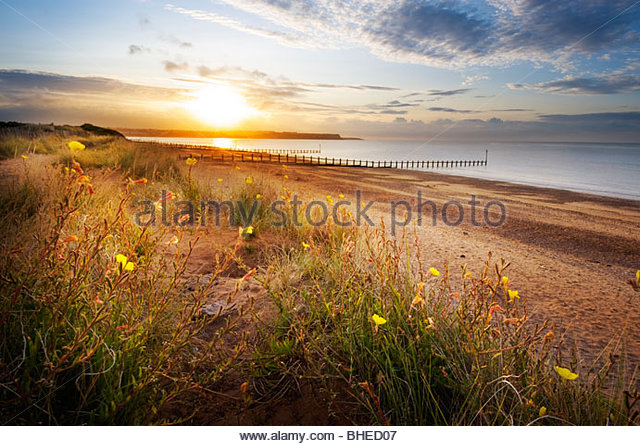 Dawlish Warren, East Devon, UK. - Stock Image
