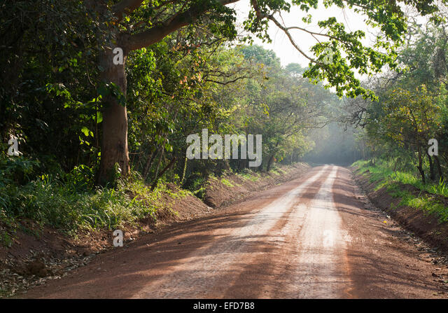 Road through Murchison Falls National Park, Uganda  January 2011 - Stock Image