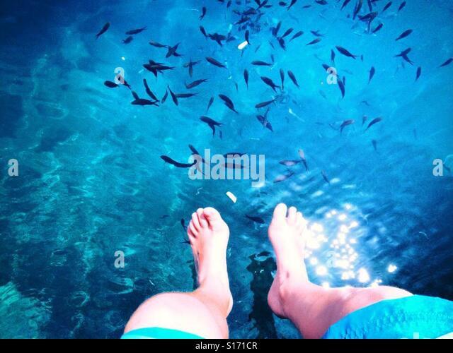Feet and fish - Stock-Bilder
