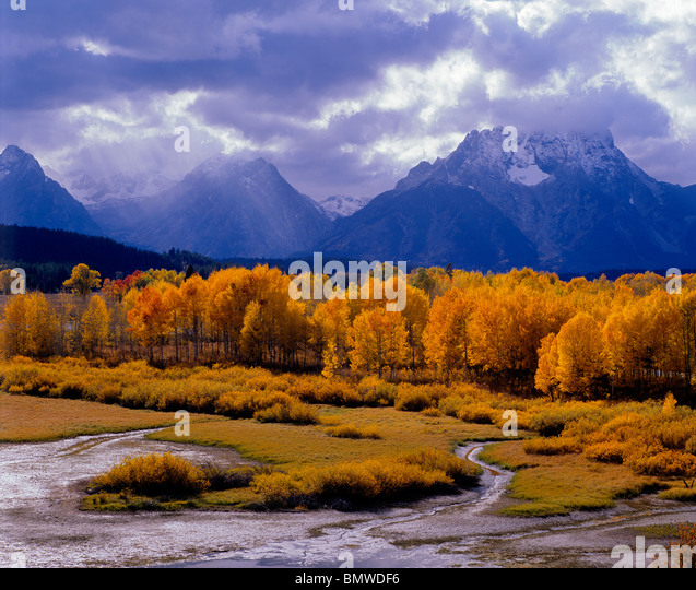 Grand Teton National Park, WY The sun's rays illuminates an aspen grove at Oxbow Bend with storm clouds over - Stock-Bilder