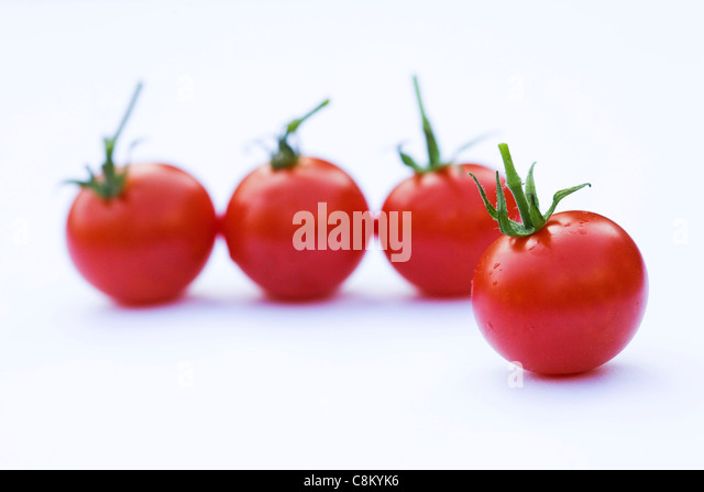 Lycopersicon esculentum. Small cherry tomatoes 'Gardeners Delight' on a white background. - Stock Image