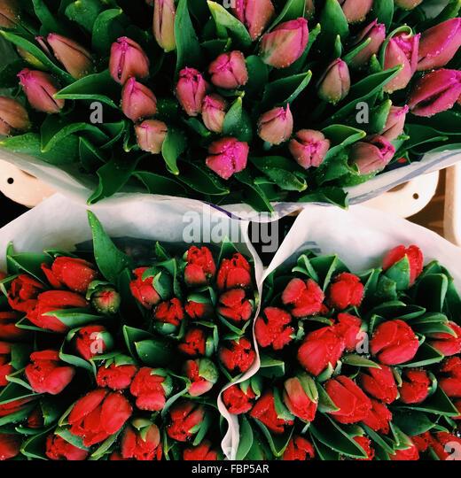 Full Frame Shot Of Rose Buds For Sale In Market - Stock Image