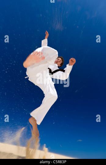 Martial artist in spinning kick. - Stock-Bilder