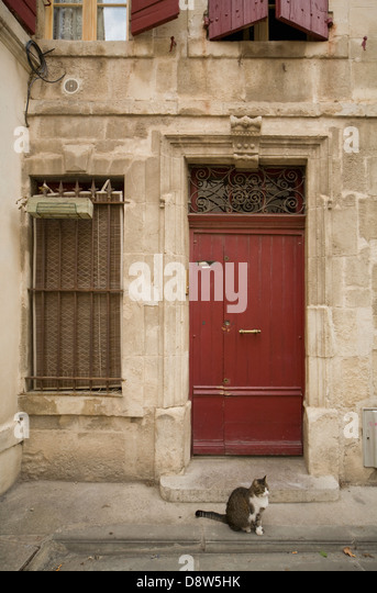 A door and window of an old house, with a tabby cat sitting on the pavement outside, Arles, France - Stock Image
