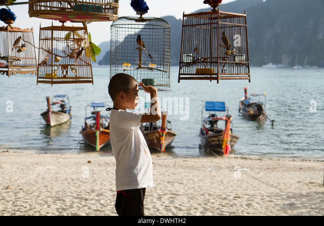 Boy on the beach looking for something in a nostalgic atmosphere - Stock Image