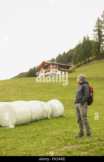 Mature hiker standing near bales and looking at view, Austrian alps, Carinthia, Austria - Stock-Bilder