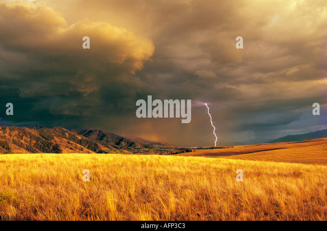 USA Eastern Idaho mountain storm and lightning over a field of a golden wheat - Stock Image