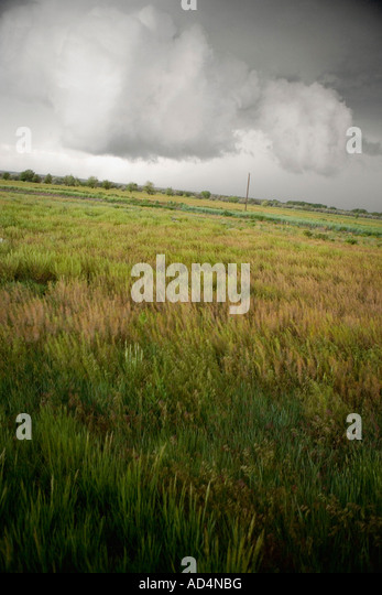 Storm clouds above a field - Stock-Bilder