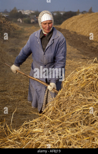 Belarus Eastern Europe Minsk former farm collective worker pitchfork hay - Stock Image