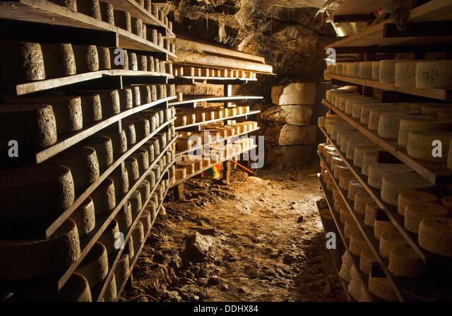 cabrales-cheese-cave-cheese-fermentation