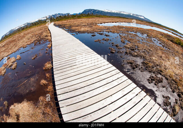 Fisheye perspective of trail to Western Brook Pond, Gros Morne National Park, Newfoundland, Canada - Stock Image